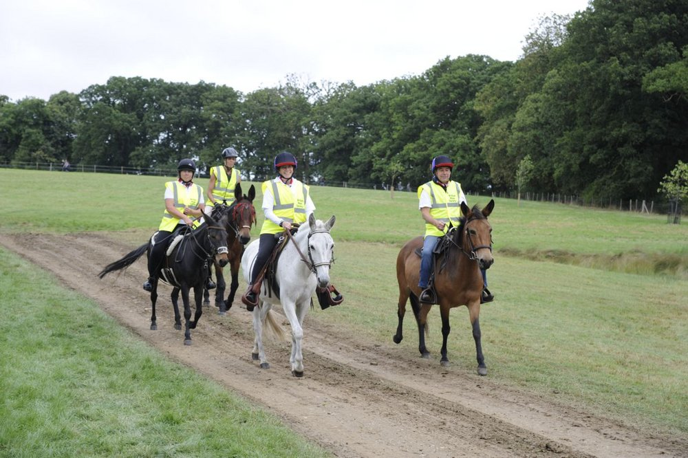 The British Mule Society explored the grounds (Credit: JPC Images)