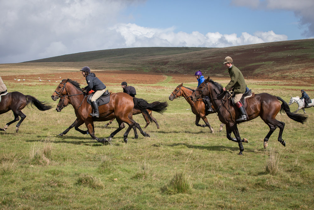 Over 40 riders canter across moorland (Credit: Liberty Trails/Polly Baldwin  www.dynamicpictures.co.uk )
