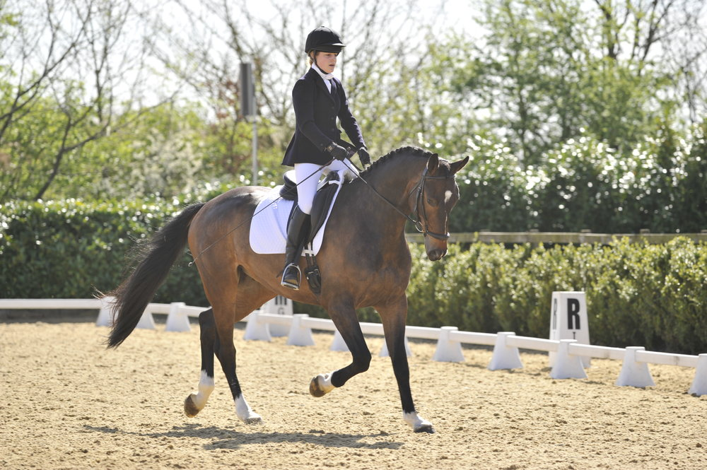 British Dressage bring back combined training