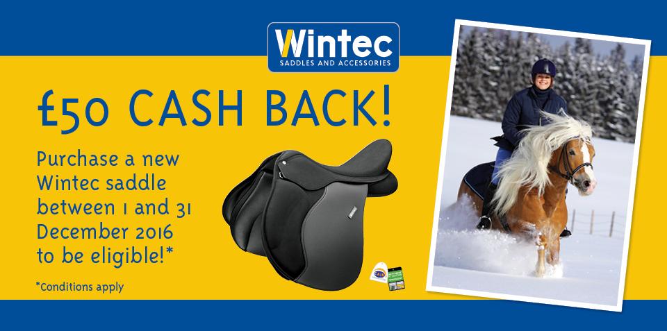 Wintec saddle offer