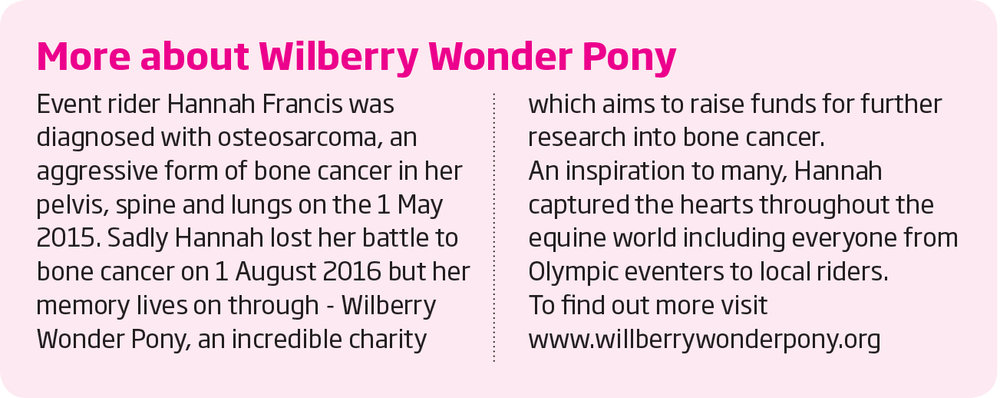 wilberry wonder pony information.jpg