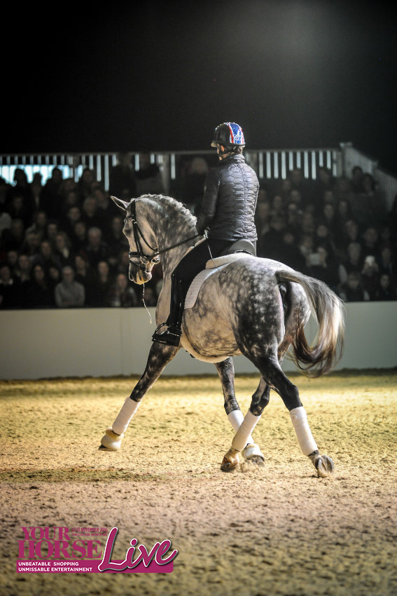 Charlotte D 2 Copyright Your Horse Live.jpg