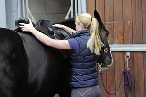Enlisting the help of a qualified saddle fitter is vital when it comes to saddle fit, but there are a few things you can keep an eye on yourself