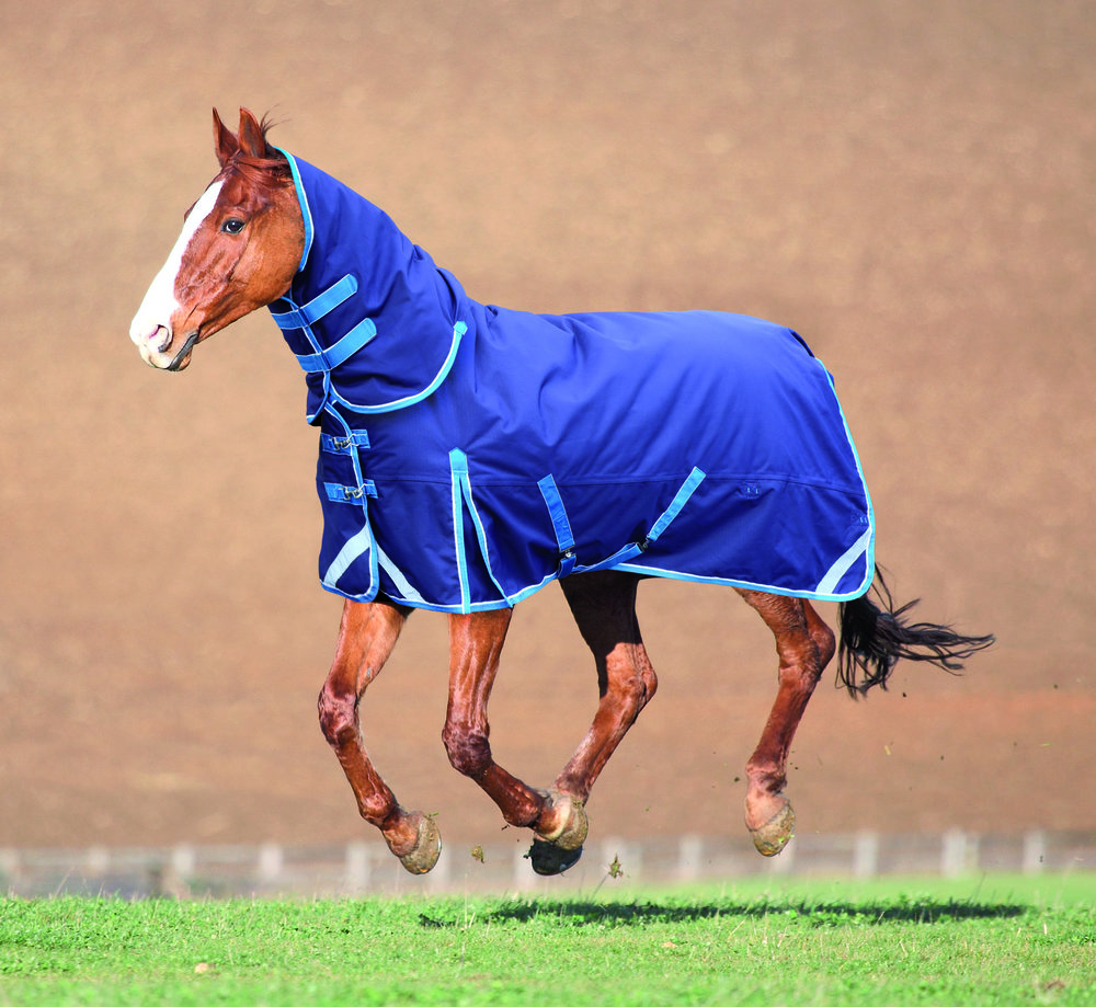 Choosing the right rug for your horse will keep him comfortable sand dry