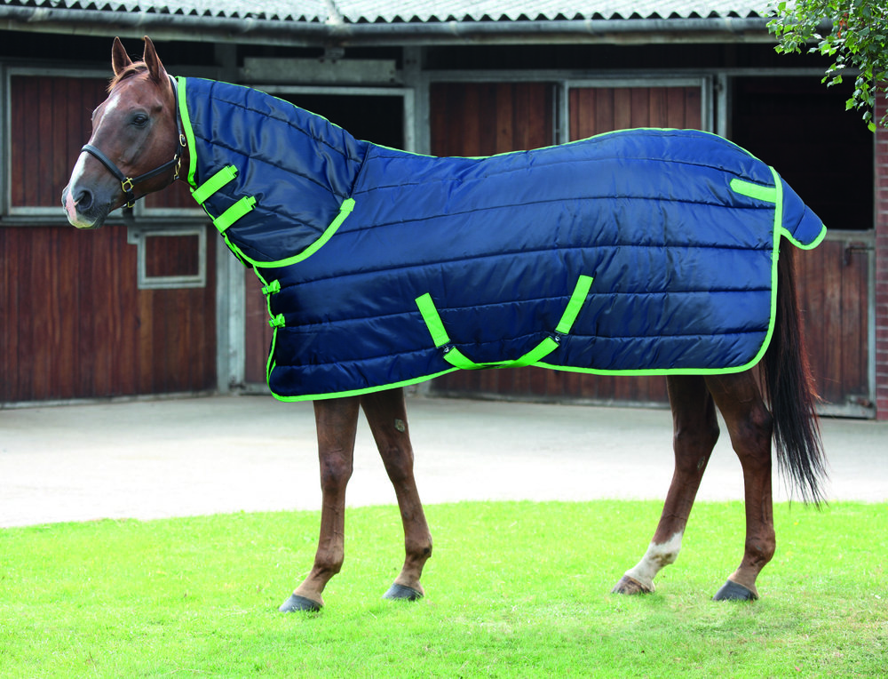 A medium weight rug will provide added warmth if your horse is clipped