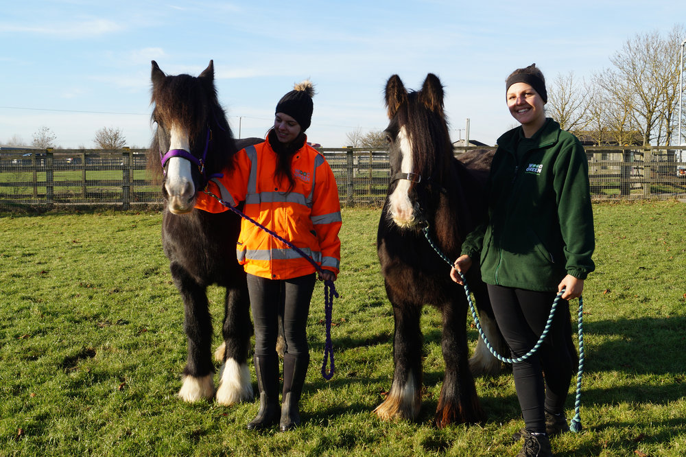 Wood Green Field Animal Rehomers Sarah Spolton and Emily Price with Bilbo and Fleetwood (Pic: Redwings)