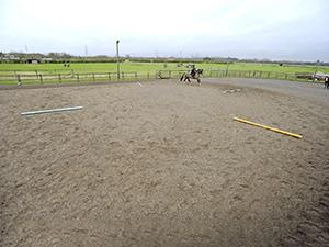 horse riding round poles