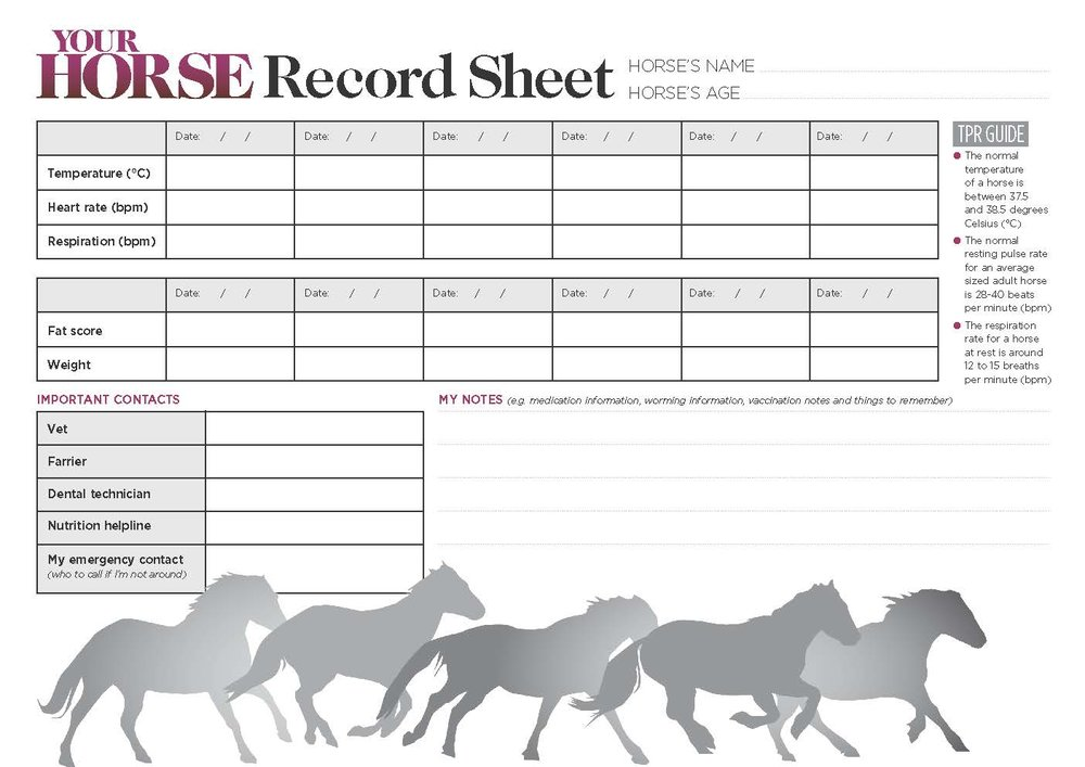 Your Horse Record sheet pic.jpg
