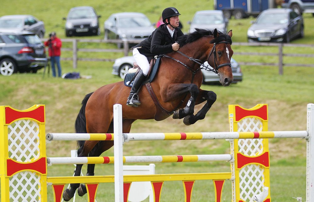 The first event in Ireland to hold Dubarry Burghley Young Event Horse Qualifiers is at the Tattersall's Ireland July Show (Credit: Tattersalls Ireland)