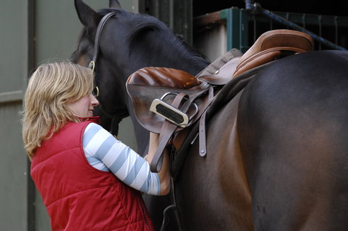 Saddles are commonly targeted by thieves.