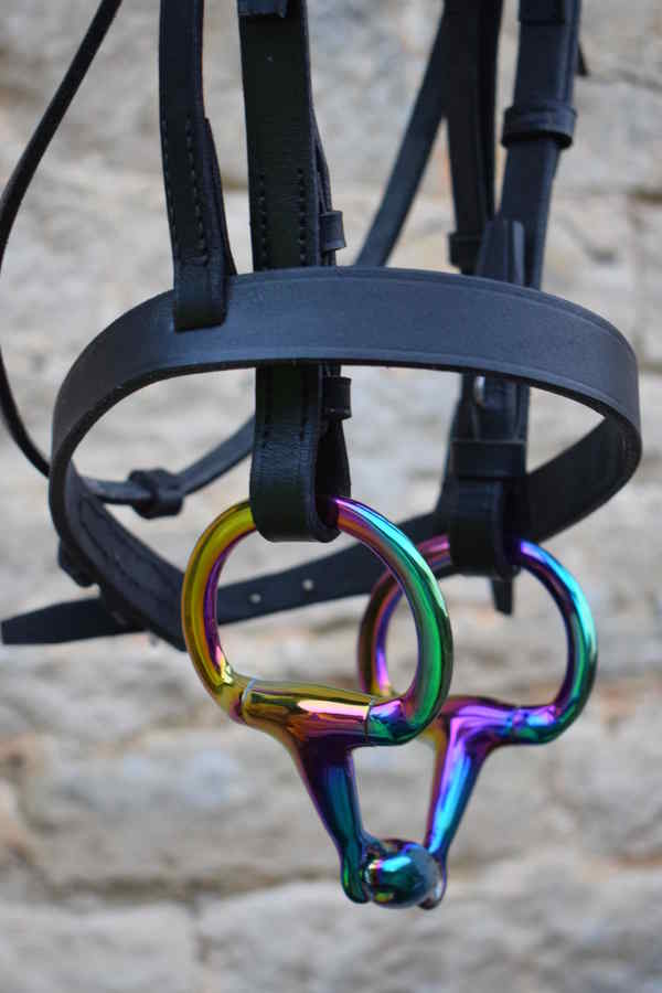 buy a rainbow coloured bit for your horse your horse magazine