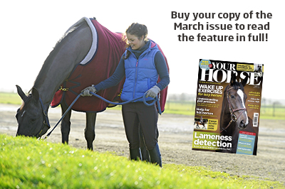 Your Horse March issue magazine plug