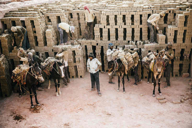 Donkeys loaded with bricks in India (Pic: Brooke)