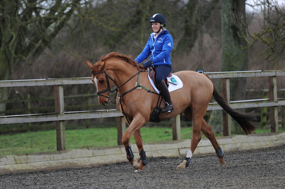 Starting in walk helps your horse get a good understanding of the exercise