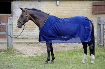 Bucas Competition Cooler rug