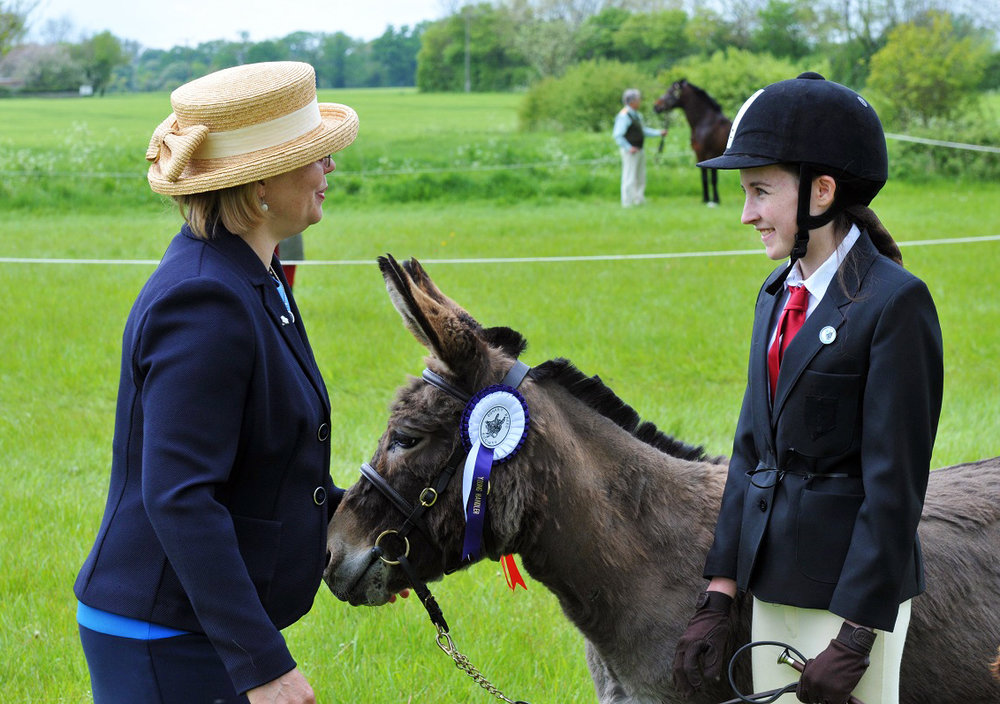 Laura Copping and Thyme with judge Britt Evans - taken Redwings Show 2016 (Pic: Redwings)