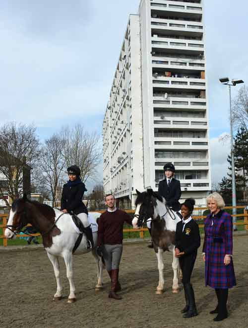 duchess of cornwall and horses.jp