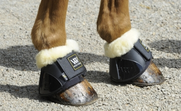 Woof Wear Smart overreach boots