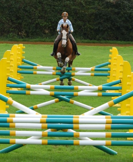 Grid work will help to improve your horse's balance