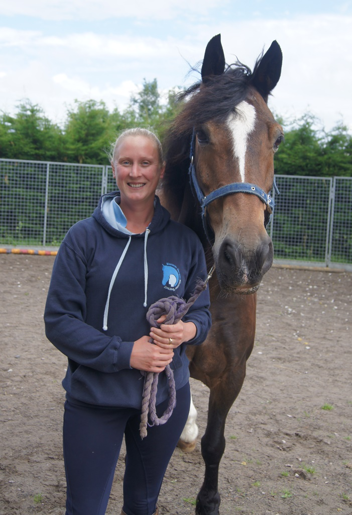 HorseWorld's Discovery courses aim to help young people