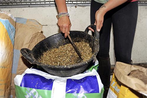 small horse feed