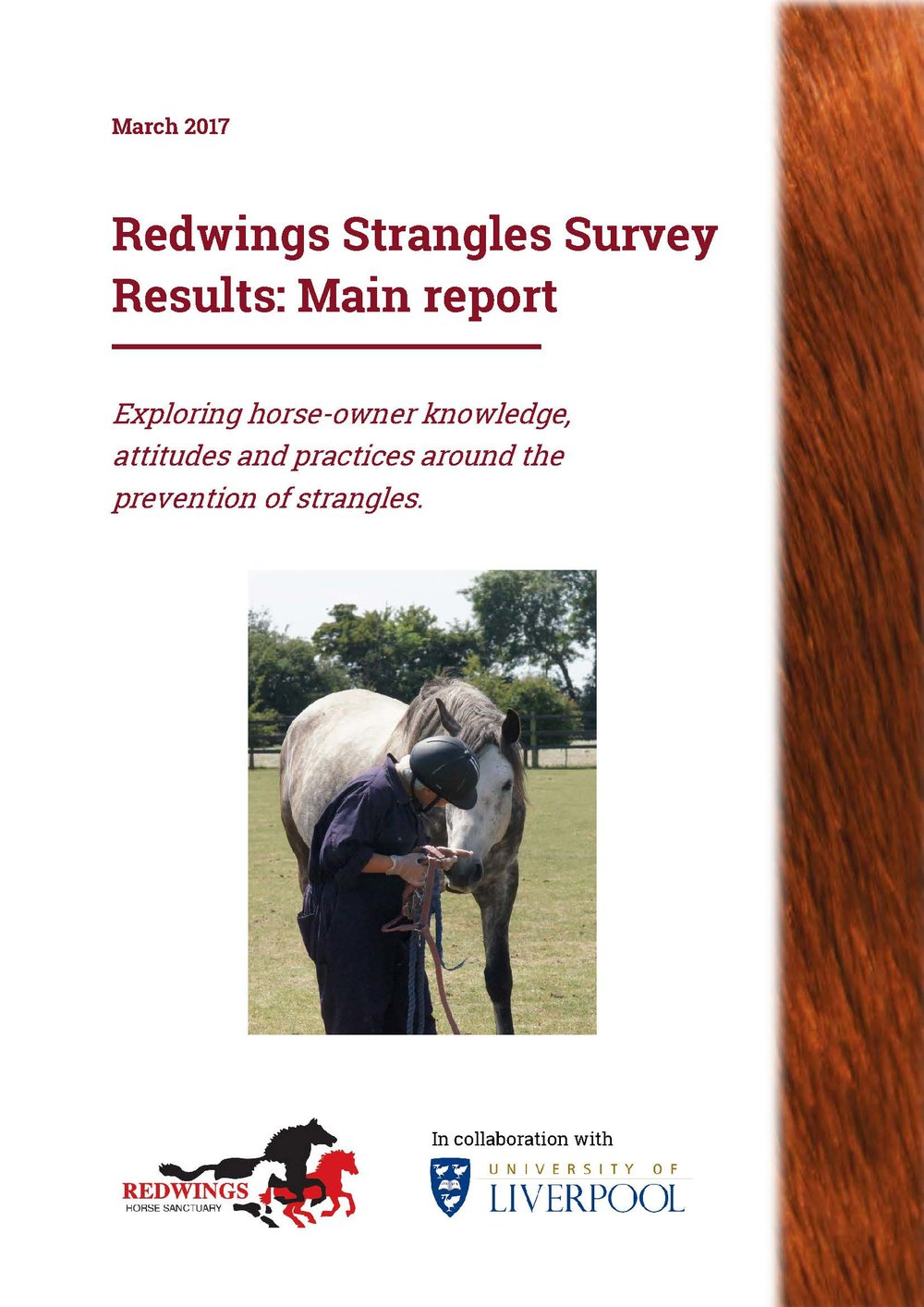 Redwings survey results