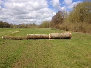Logs-300x225.jpg