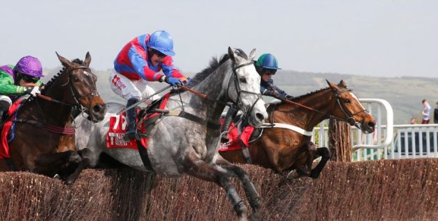horses racing on Ceres charity lunch day