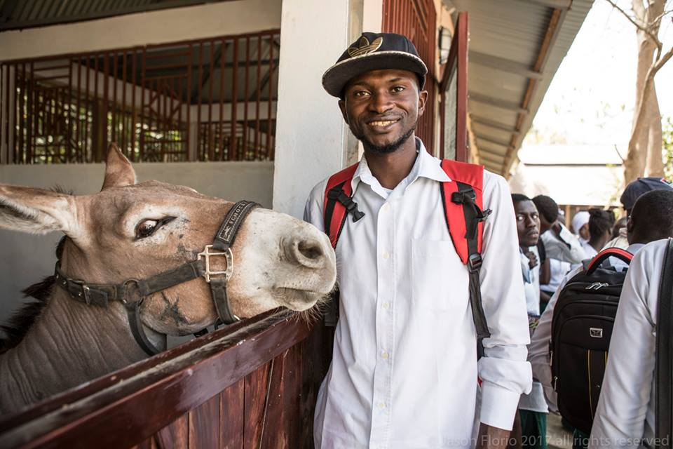 The GHDT aims to improve the health and welfare of working equines in Gambia