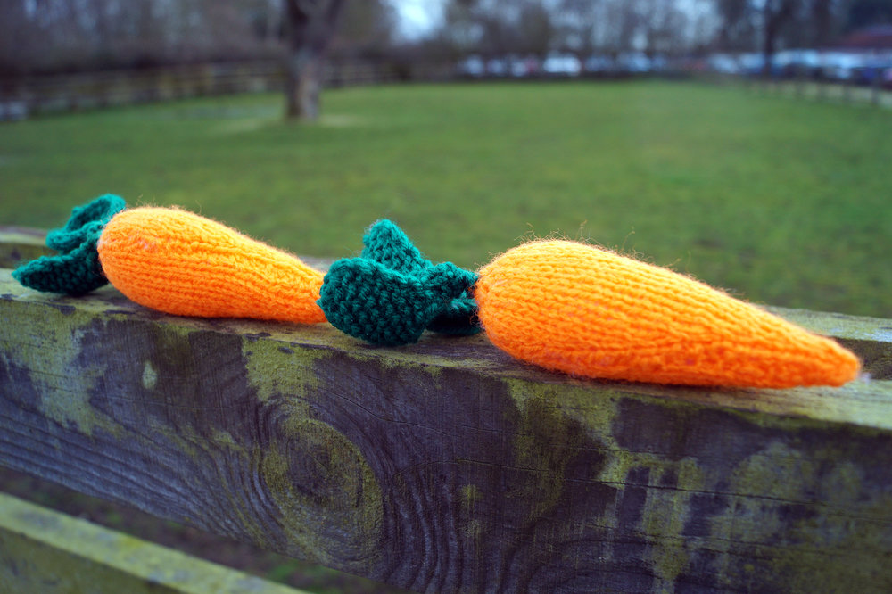 Why not turn your hand to knitting a carrot? (Pic: Redwings)