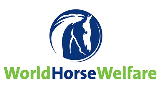 World horse Welfare logo