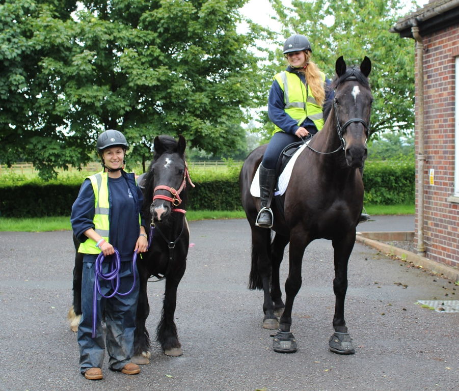 Beaufort used to lend a hoof and accompany inexperienced horses to give them confidence (Pic: HorseWorld)