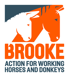 The Brooke Logo