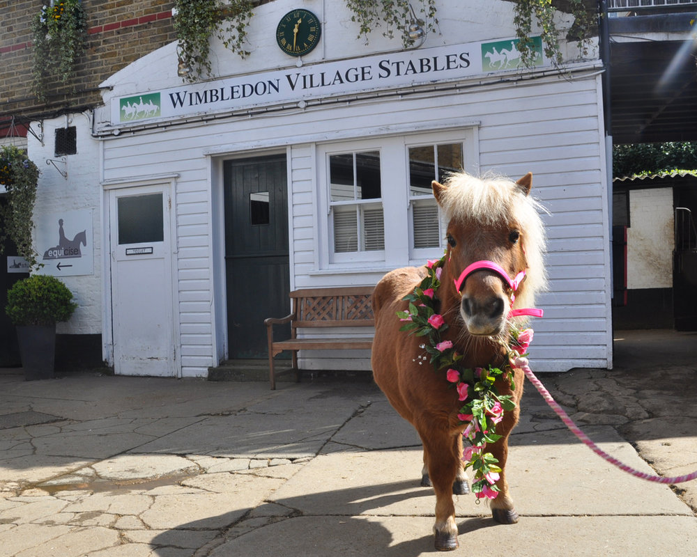 Mini Fat Pony was on hand to pick up the cheque (Pic: Brooke)