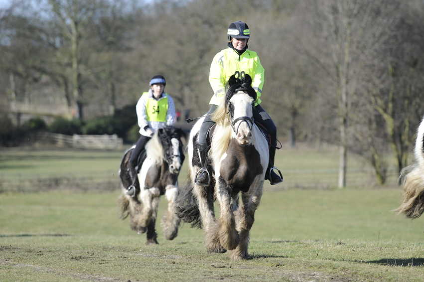Even though it's not competitive, it's still important that your horse has enough stamina to happily complete the ride