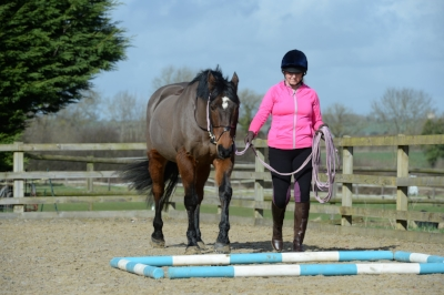Simple pole work exercises in walk are a great way to work your horse's core