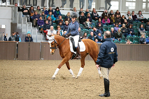 Peter Dove, founder of Dressagetraining.tv, teaches his daughter, Milly Dove