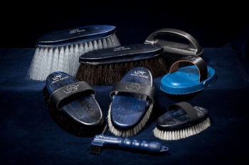 The set of brushes will make your horse's coat shine