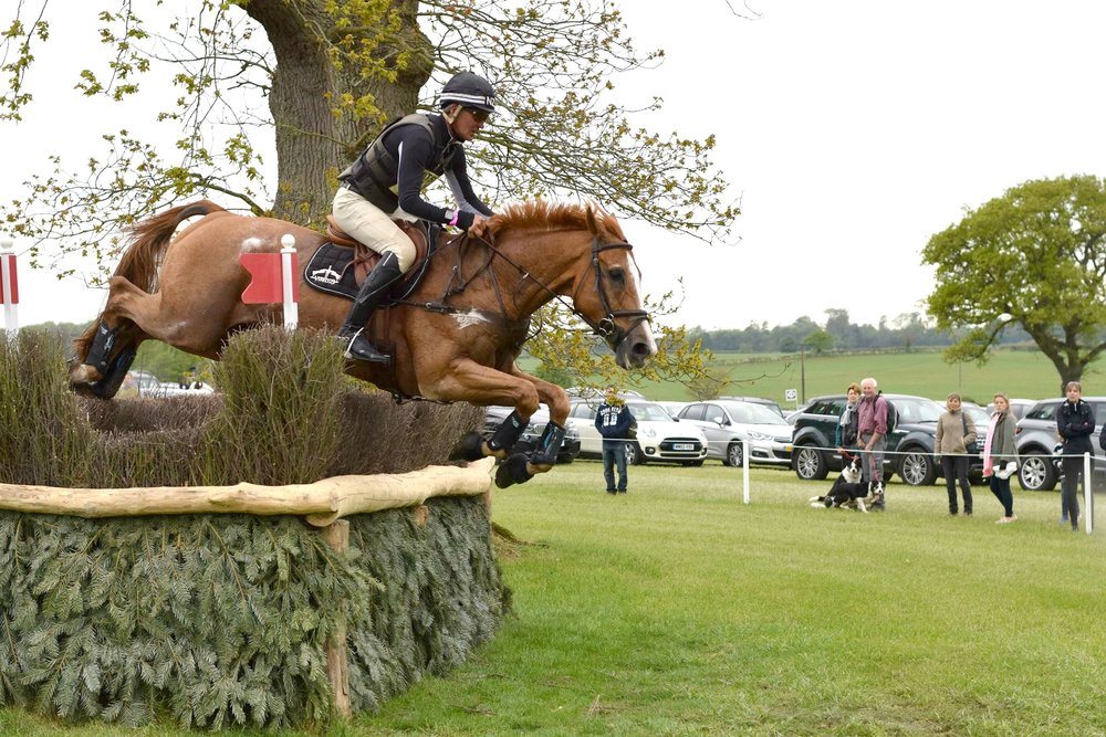 Nicholson was third after the cross-country phase of the competition (Pic: D Bailey)