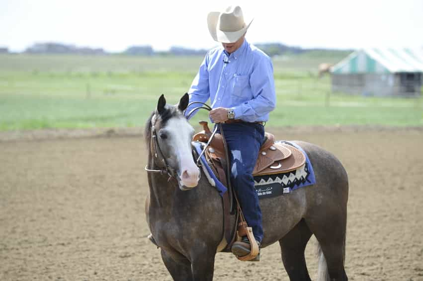 What Are The Benefits Of Western Riding Your Horse Magazine
