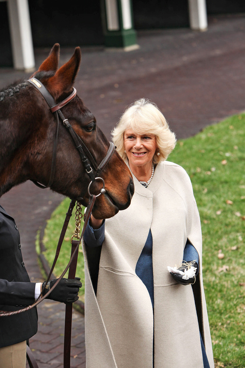 President of Brooke, HRH The Duchess of Cornwall personally chose the charity (Pic: Jennifer Munson)