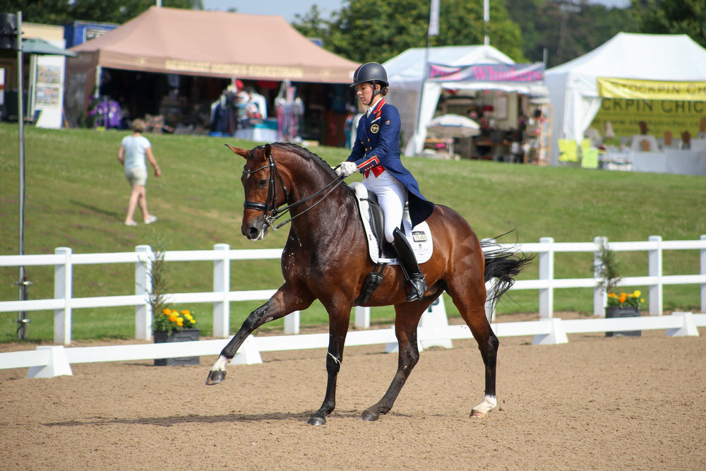 Charlotte Dujardin riding Mount St John Freestyle