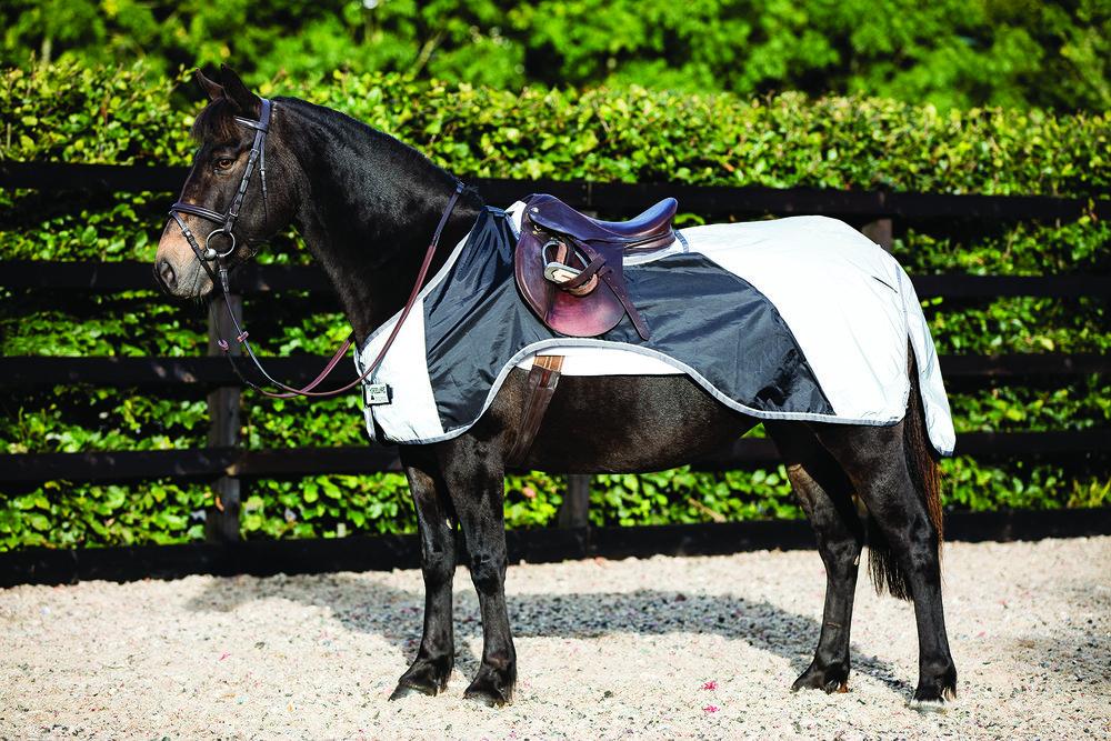 horseware-night-rider