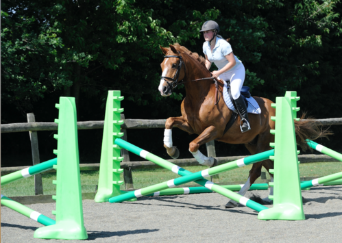 Jumping a bounce with your horse improves your accuracy and control.