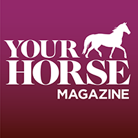 Your Horse logo