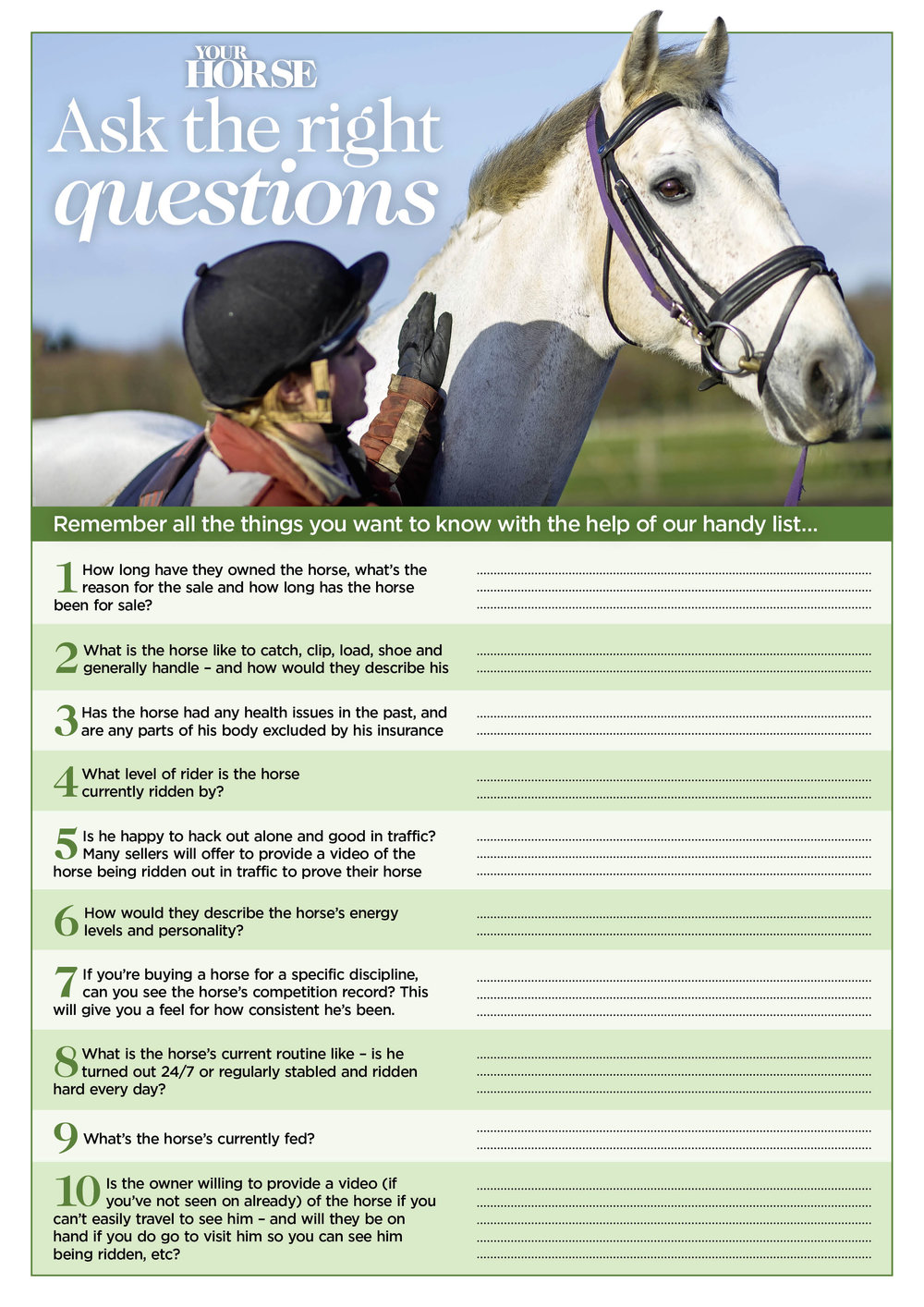 BUYING HORSE QUESTION LIST