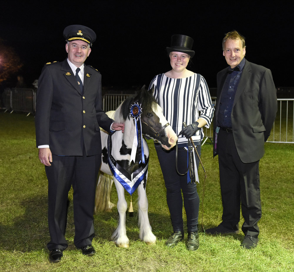 Buggy (rescued by World Horse Welfare) was crowned a champion