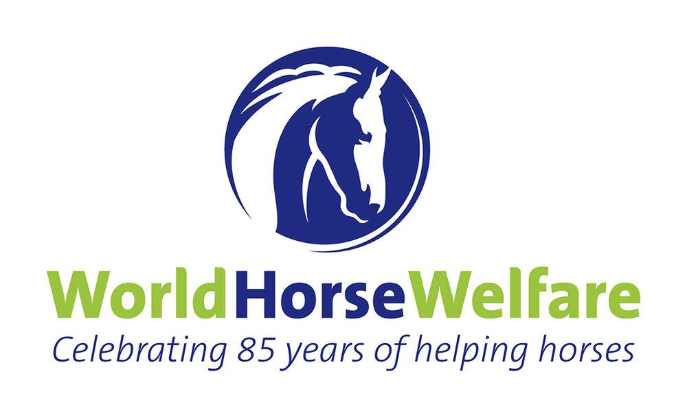 world world welfare