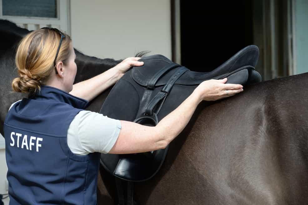 fitting-a-saddle