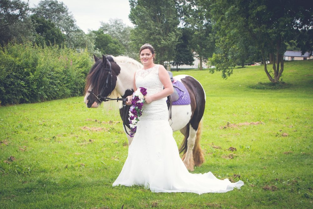 Would you invite your horse to your big day?